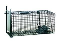 gabbia cattura gatti trappole per animali gabbie gabbia