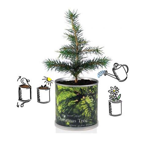 weihnachtsbaum aus der dose online kaufen design3000 de