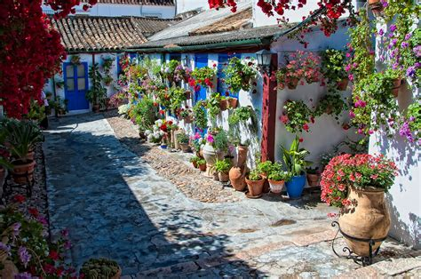 Patio Cordoba by Cordoba Day Tour The Amazing Tour In Andalusia By