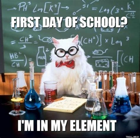 First Day Of School Meme - first day of school cat meme