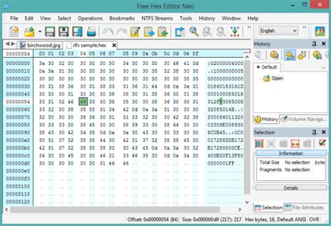 Editor Ahensi free software free hex editing program truthmanager