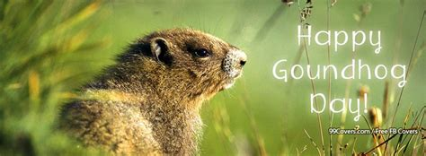 groundhog day zodiac cover photos happy groundhog day covers