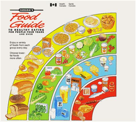 printable version canada s food guide canada s food guide nutritional tools