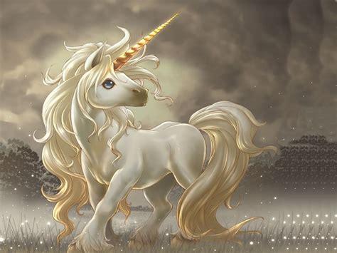 imagenes de unicornios y hadas reales im 225 genes y gifs de unicornios fondos de pantalla y mucho