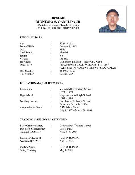 Mechanic sample resume mechanic resume sles aircraft templates