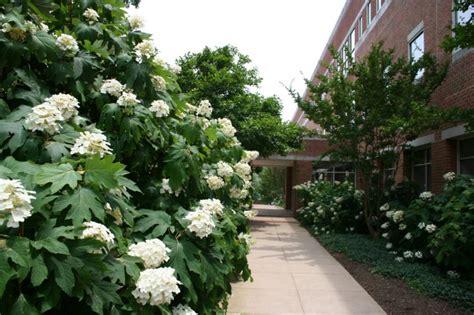 Virginia Tech Falls Church Mba by Cuses Graduate School Virginia Tech