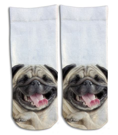 laughing pug laughing pug barely show socks
