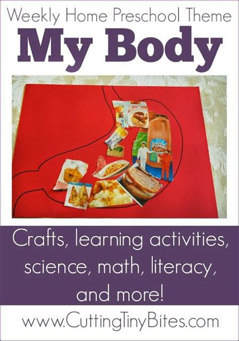 cool math scenarios and strategies books best 20 human crafts ideas on human