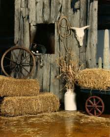 western theme decor western theme props country and western