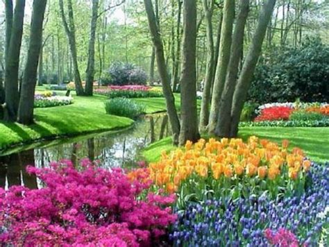amazing gardens the most extraordinary flower gardens neatorama