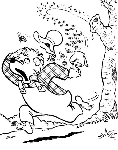 honey bear coloring pages honey bear coloring pages coloring pages