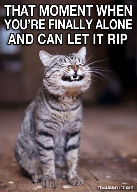 Funny Laugh Meme - let it snow funny memes