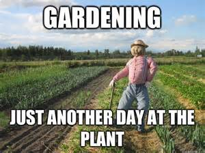 Gardening Meme Gardening Just Another Day At The Plant Scarecrow