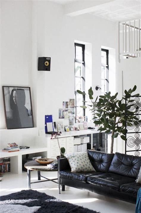 amazing leather sofas  white black  brown founterior