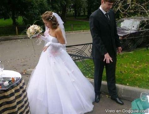 imagenes graciosas boda fotos graciosas atrevidas y rid 237 culas de las bodas dogguie
