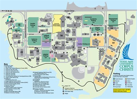 south texas college map texas a m university corpus christi acalog acms
