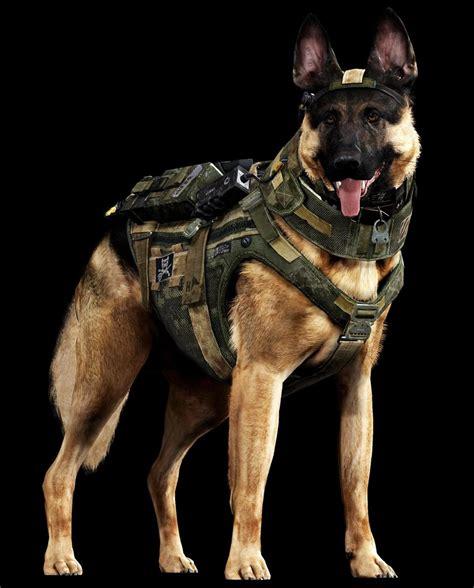 war dogs of war meet call of duty s new barkout war