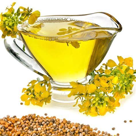 olio di colza alimentare olio di colza alimenti olio di colza alimenti