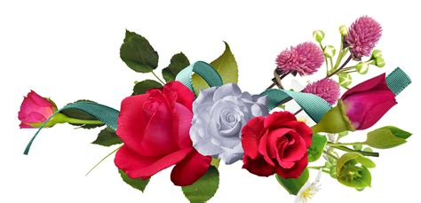 Mawar Square by Mawar Bunga Bunga Merah 183 Gambar Gratis Di Pixabay