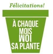 f 233 licitations 224 leurs plantes et eux les bons plans de
