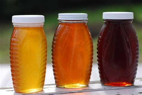 color of honey adulterated honey natureplica