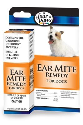 ear mites in dogs home remedy ear mite remedy dogs