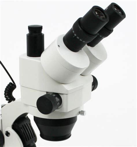 Zoom Stereo Microscope Xtl 2600 xtl stereo zoom microscope 7x 45x trinocular only