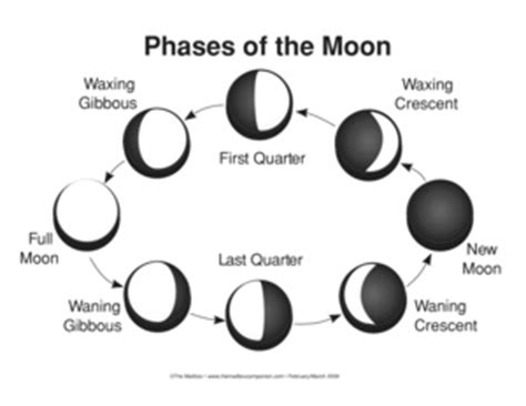 phases of the moon diagram to label 4 phases of moon diagram 4 free engine image for user