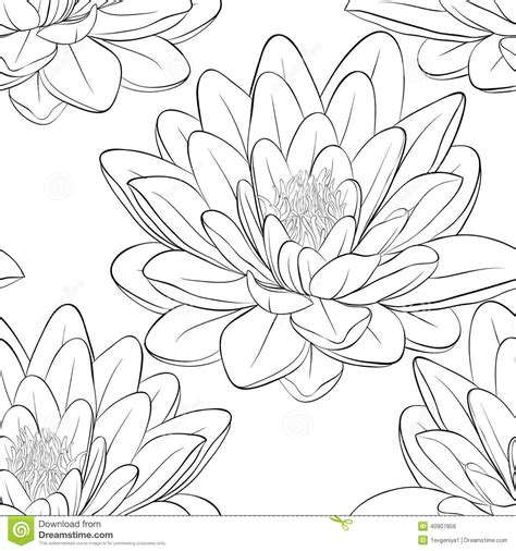 lotus pattern drawing japanese lotus flower outline lotus flower drawing black