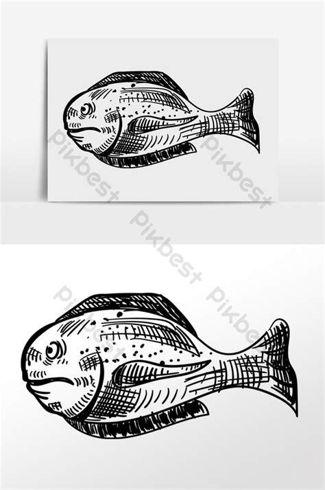 Gambar Ikan Badut Sketsa - Gambar Ikan HD