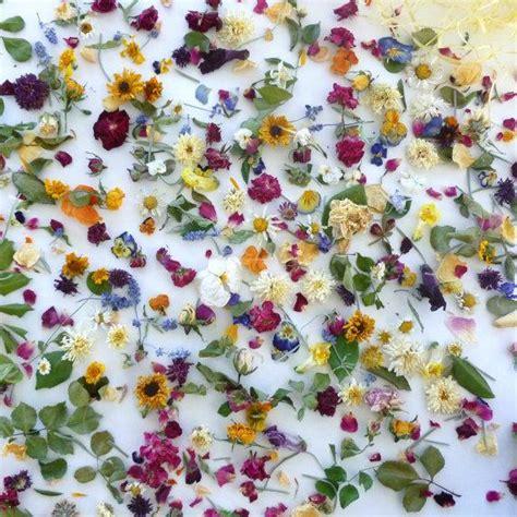 Confetti Decorations by Petal Confetti Wedding Confetti Dried Flowers
