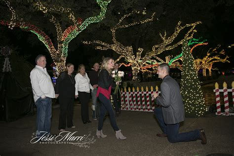 Zoo Lights Houston Texas Proposal Photographers Jessi Lights At The Zoo Houston