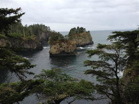 Cape Flattery Cabins by Neah Bay Photos Featured Images Of Neah Bay Wa