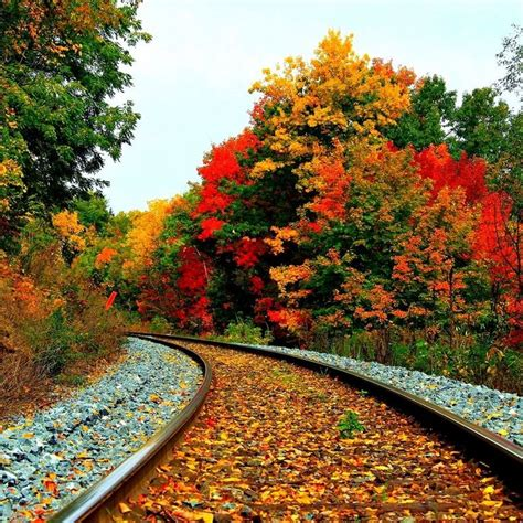 the world s best photos of autumn and woodlands flickr hive mind fall scenery wallpaper with pumpkins search fall scenery