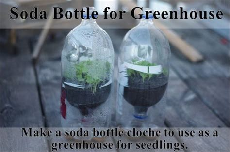 25 life hacks to make midlife a breeze the back forty fliers lifehacks for your garden others
