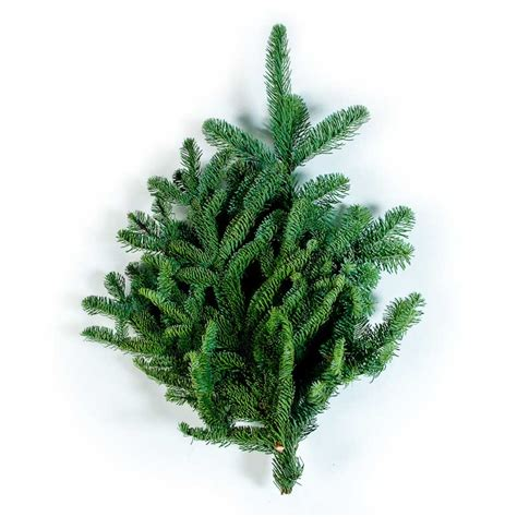 wholesale wreaths and evergreens 187 alpine farms