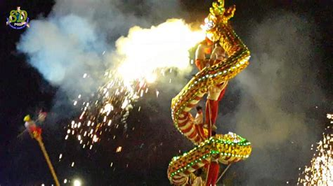 new year show in china new year show traditional new