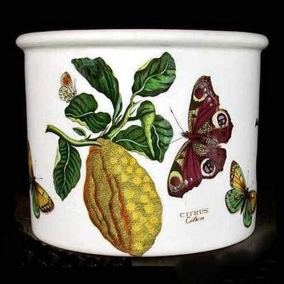 Botanic Garden Pottery 29 Best Images About Portmeirion On Pinterest Gardens Sweet Peas And Fruit Bowls