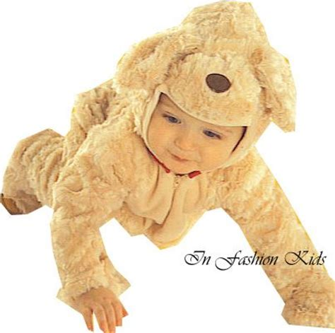 golden retriever costume for person 67 best lets like we are someone else images on