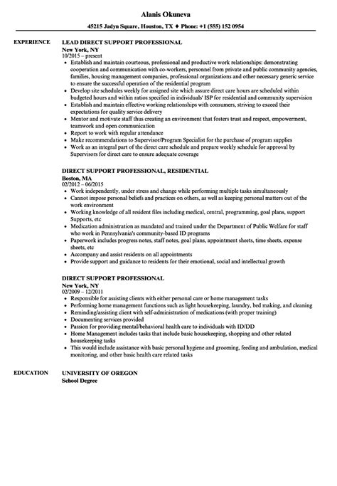 Direct Support Professional Resume by Direct Support Professional Resume Sles Velvet