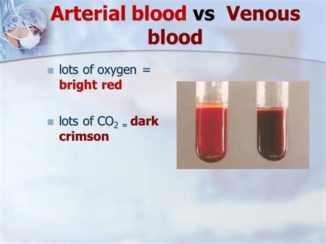 deoxygenated blood color human blood color deoxygenated blood vs oxygenated blood