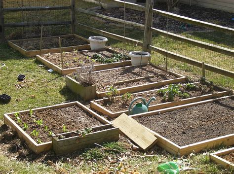 how to create a raised bed vegetable garden the poetic