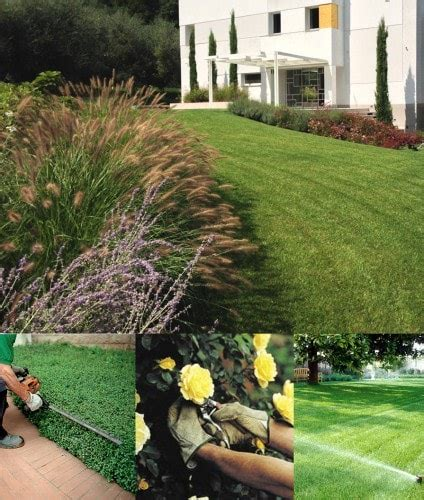 sandrini giardini come lavoriamo progettazione giardini soluzioni di