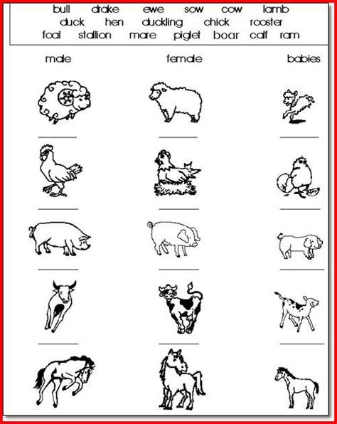kindergarten activities social studies 28 worksheets for kindergarten social studies 25