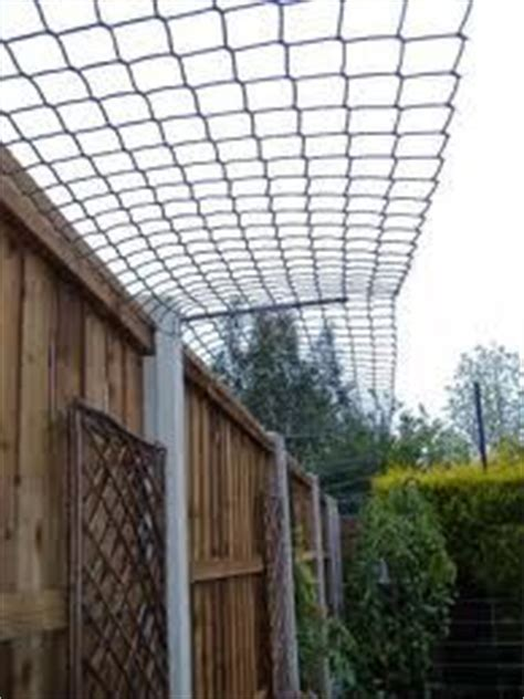 1000 images about catio on pinterest cat shelves for