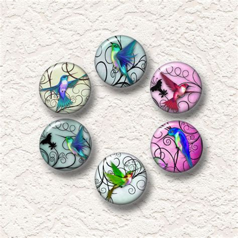 items similar to hummingbird magnets set of 6 magnets 1 25 quot in size 6 001m on etsy