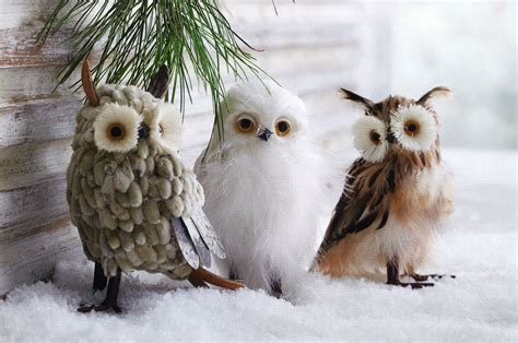wise winter owls decor ornaments set of 3