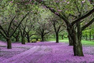 Botanic Gardens Membership Botanical Garden Membership Garden Ftempo