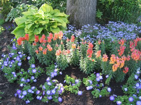 landscaping for small backyard small yard landscaping gardening