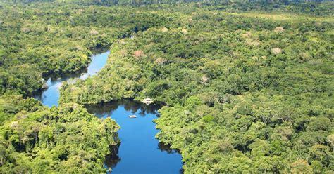 Brazilie Costa Rica Cristalino Lodge Amazonegebied Brazili 235 Tico Reizen
